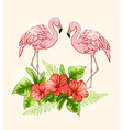 Flowers and pink flamingo vector image