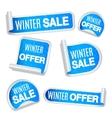 Winter Sale Labels vector image vector image