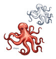 octopus isolated sketch icon vector image