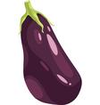 eggplant vegetable cartoon vector image vector image
