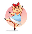 Cartoon pig ballerina vector image