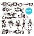 Rope Knots Sketch Set vector image