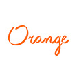 typography and orange in flat style vector image