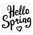 phrase hello spring brush pen lettering vector image vector image