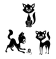 black and white cats vector image vector image