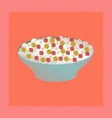 flat shading style icon salad plate vector image