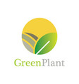 circle green plant logo vector image