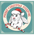 Merry Christmas Everyone Card vector image