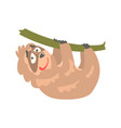 cute cartoon sloth character hanging on the tree vector image