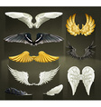 Wings set on black background vector image vector image
