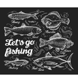 Fishing Hand drawn sketch fish herring trout vector image