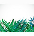 frame of colorful tropical leaves concept of the vector image