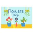 flat design flowers shop facade icon store modern vector image vector image