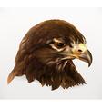 Eagle head realistic vector image vector image
