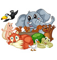 Different kind of animals vector image vector image