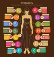 Vitamins and their impact vector image