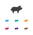 of animal symbol on hog icon vector image