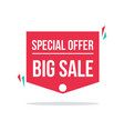price label spesial offer sale design red sticker vector image