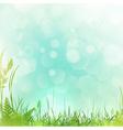 spring or summer meadow vector image