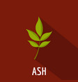 ash leaf icon flat style vector image