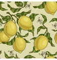 pattern with lemon branches vector image
