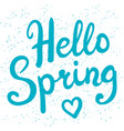 phrase hello spring brush pen lettering vector image