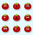 cartoon tomato cute character face sticker vector image