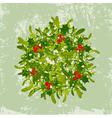 Christmas Mistletoe vector image