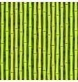 seamless green bamboo texture vector image