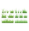 nature of green field grass vector image