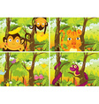 Many animals living in the jungle vector image vector image