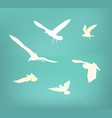 seagull flying silhouette vector image