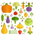 different vegetables in cartoon style vector image
