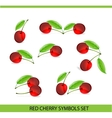 glass cherry symbols vector image