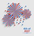 Firework Colorized in Flag US for Celebration vector image