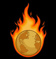 Burning Desolated Earth vector image