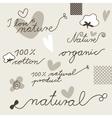 Cotton design elements vector image