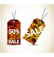 Set of autumn sale tags vector image