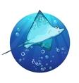 Cartoon drawing of a fish ramp vector image
