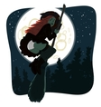 Witch flying on a broomstick vector image vector image