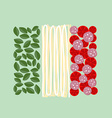 Italy flag of ingredients of food Basil pasta and vector image