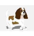 spaniel dog vector image vector image