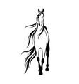 horse art vector image