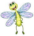 A smiling dragonfly vector image