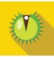 Hazelnut icon in flat style vector image
