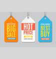sale label paper tag hanging set vector image