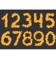 Orange cutting Numbers vector image