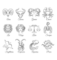 Zodiac graphic signs vector image