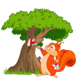 Squirrel painter vector image