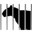 Leopard in zoo vector image
